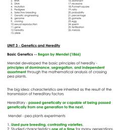 pedigree chart explanation [ 791 x 1024 Pixel ]