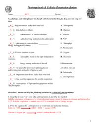 worksheet. Cell Respiration Worksheet. Worksheet Fun ...