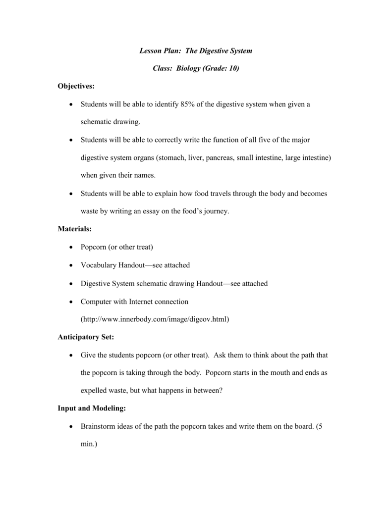 hight resolution of Lesson Plan: The Digestive System