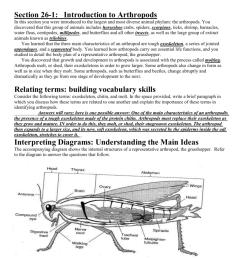 arthropoda diagram [ 791 x 1024 Pixel ]