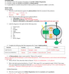 glucose bond diagram [ 791 x 1024 Pixel ]