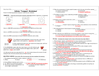 worksheet. Cellular Transport Worksheet Answer Key. Grass