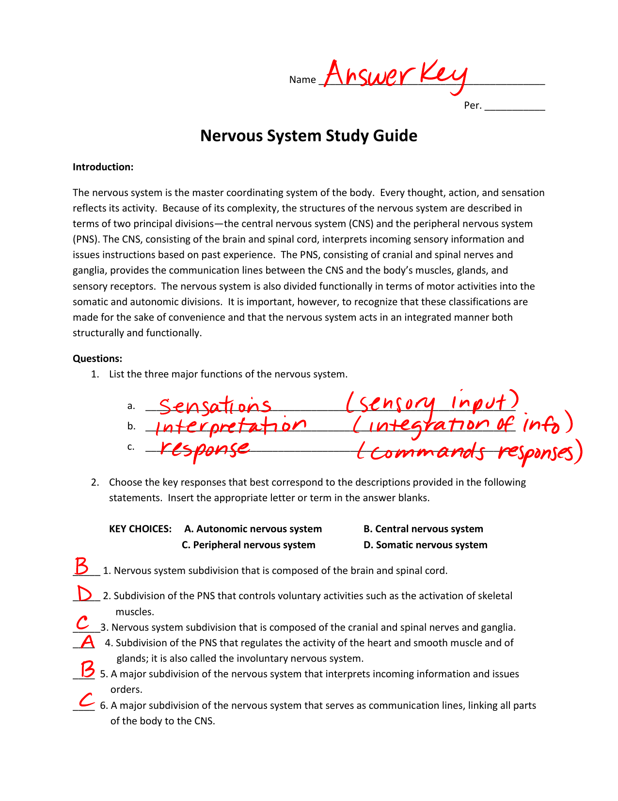 Nervous System Study Guide