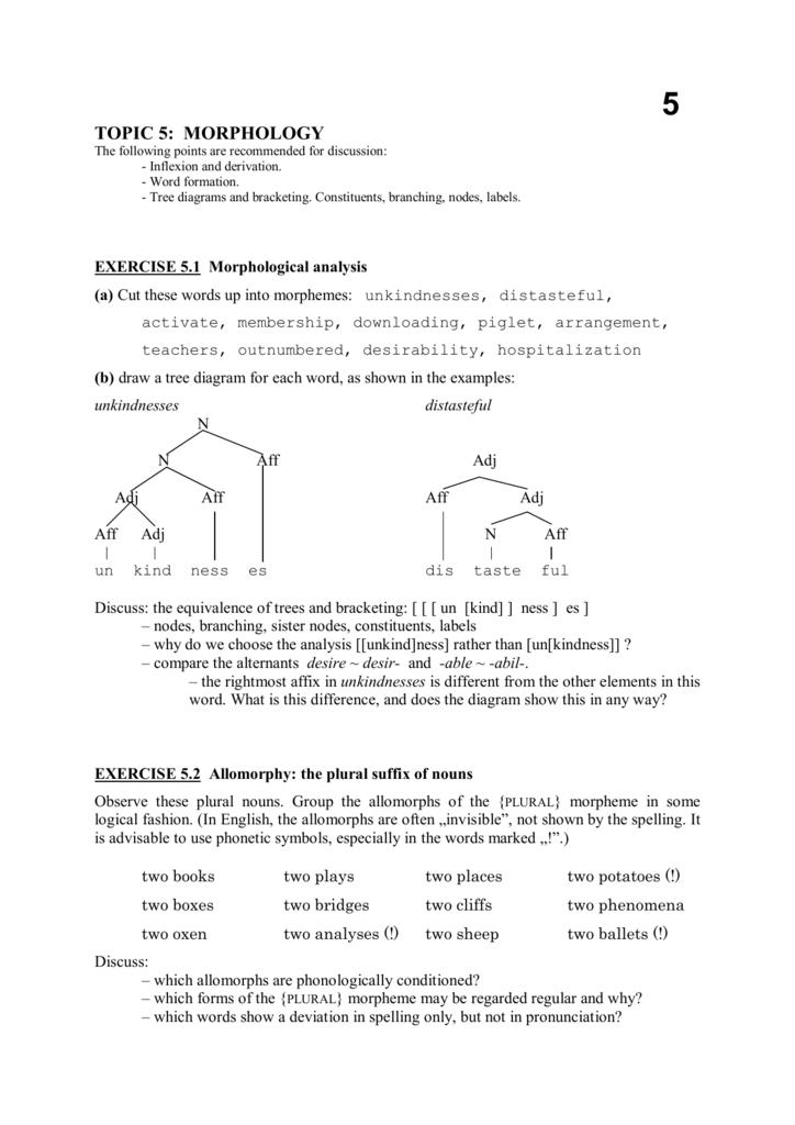 morphology tree diagram blower motor resistor wiring topic 5