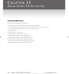 chapter 13 special senses the eye and ear learning objectives upon completion of this chapter you will be able to identify and define the combining  [ 812 x 1024 Pixel ]