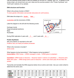 label dna diagram [ 791 x 1024 Pixel ]