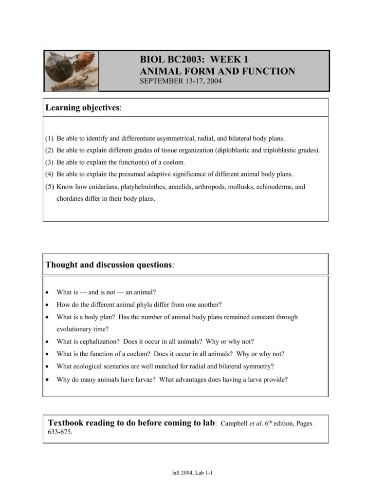 medium resolution of Lab 1: Animal form and function