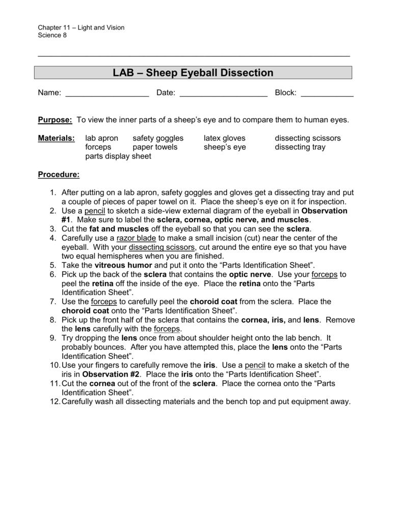 medium resolution of inner eye diagram label
