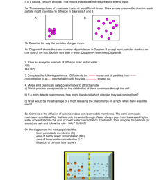 diffusion and osmosis worksheet diffusion is the movement of particles from areas of higher concentration to areas of lower concentration it is a natural  [ 791 x 1024 Pixel ]