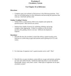Worksheet: Circulatory System [ 1024 x 791 Pixel ]