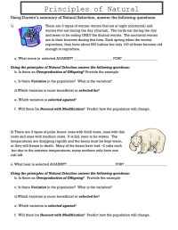 worksheet. Natural Selection Worksheets. Worksheet Fun ...