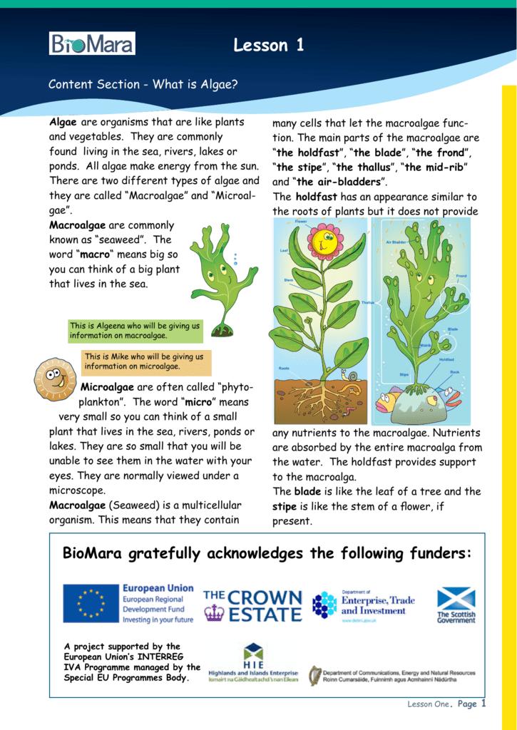 Lesson 1: What are algae?