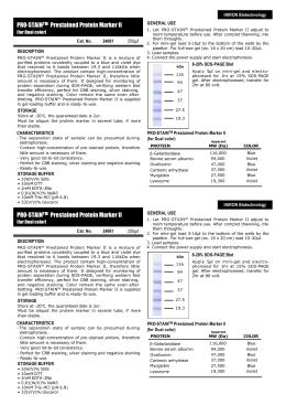 Datasheet for Prestained Protein Marker, Broad Range (7
