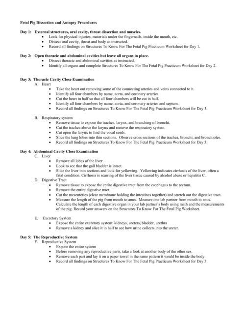 small resolution of pig diagram worksheet