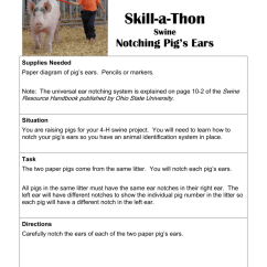 4 H Pig Diagram Power At Light Wiring Awesome Electric Skill A Thon Notching S Ears Missouri