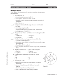 worksheet. Cell Growth And Division Worksheet. Worksheet ...