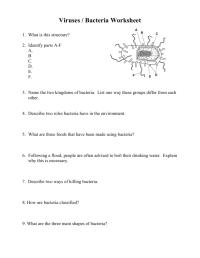 worksheet. Virus And Bacteria Worksheet. Grass Fedjp ...