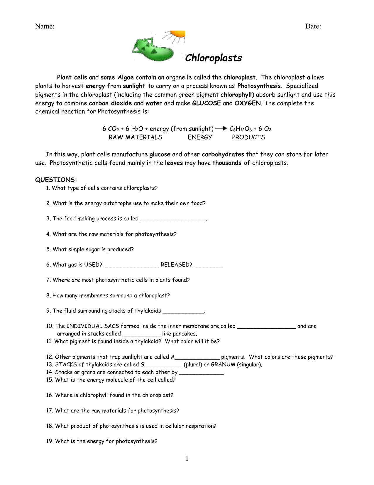 Chloroplasts Worksheet