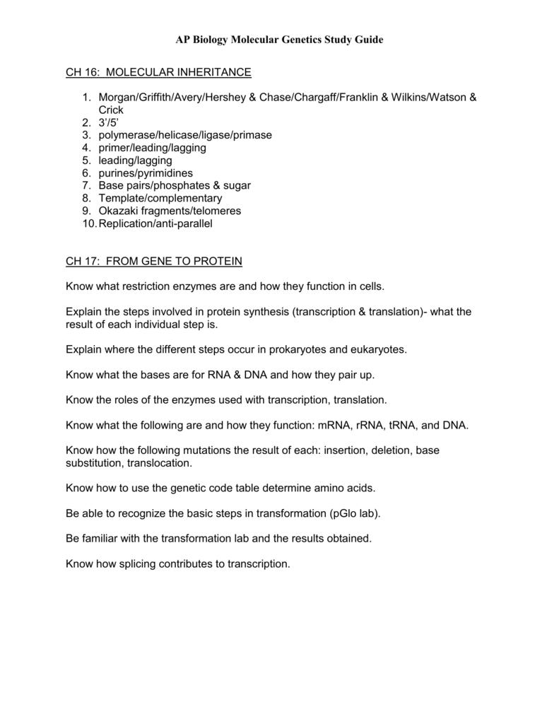 Synthesis Essay S Studylib Net Store Data Dfaa Duupi Com I Sample