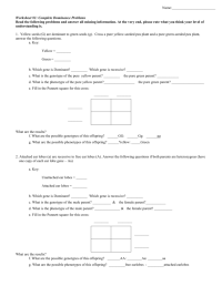 worksheet. Punnett Square Worksheet 1 Answer Key ...