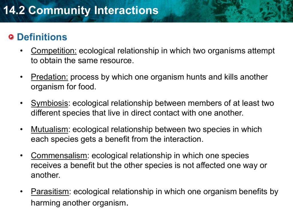 Ecological Relationships Worksheet Answer Key