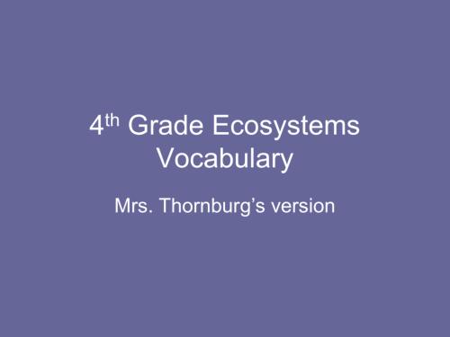 small resolution of 4th Grade Ecosystems Vocabulary