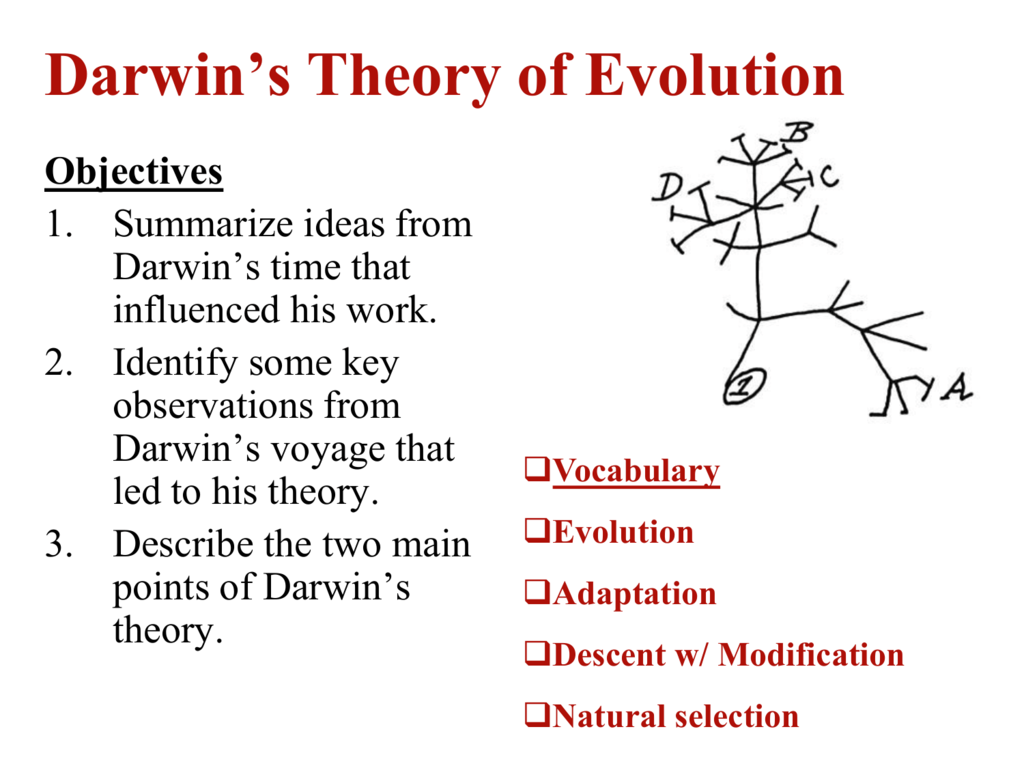Ch 14 1 Darwin Developed A Theory Of Evolution