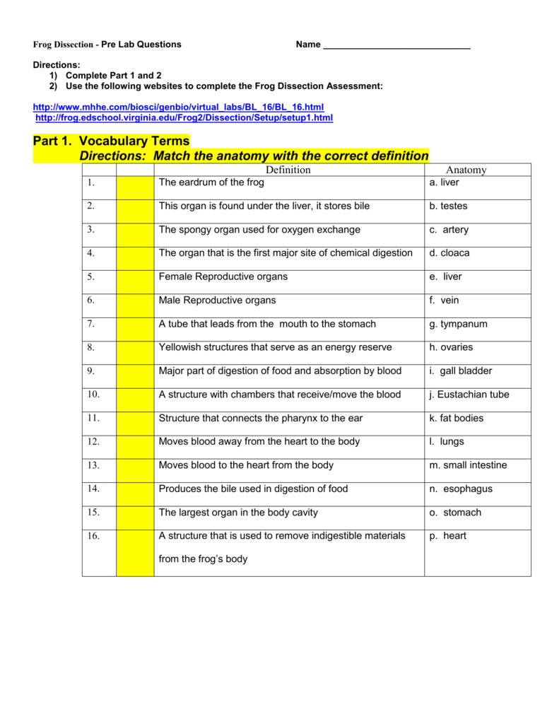 hight resolution of Frog Dissection Pre Lab Worksheet - Promotiontablecovers