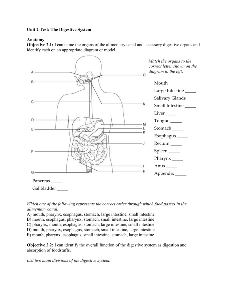 hight resolution of  objective 2 1 i can name the organs of the alimentary canal and accessory digestive organs and identify each on an appropriate diagram or model