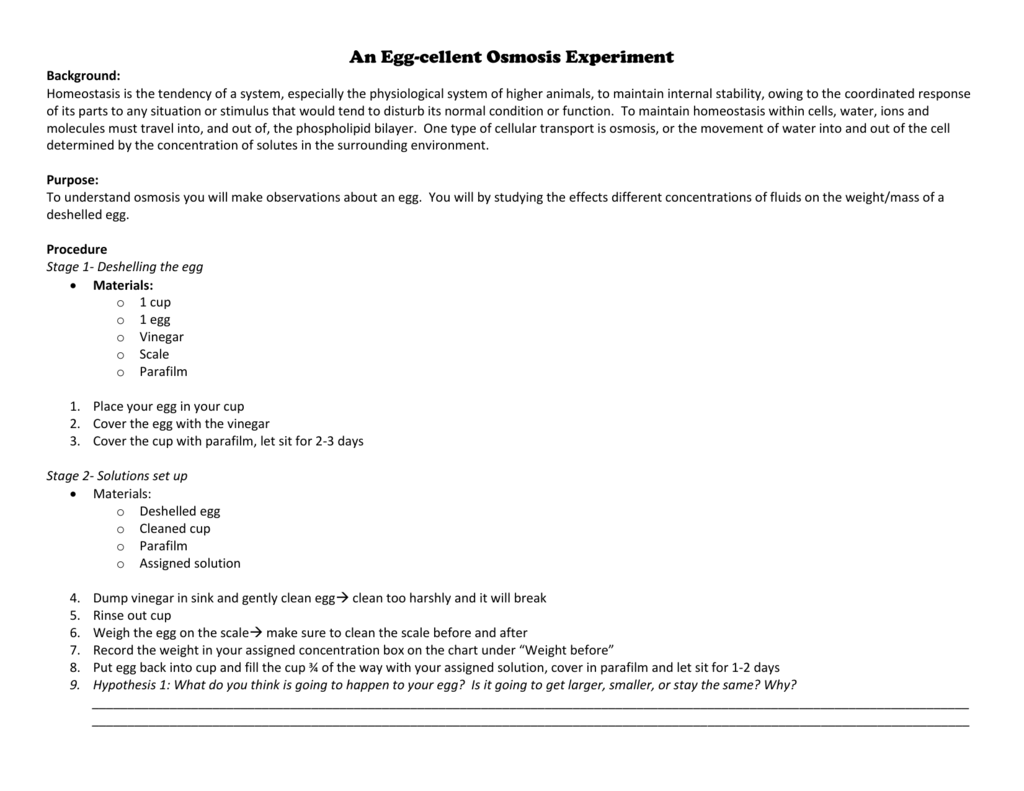 An Egg Cellent Osmosis Experiment