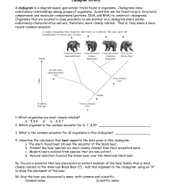 cladogram activity a cladogram is a diagram based upon similar traits found in organisms cladograms show evolutionary relationships among groups of  [ 1275 x 1651 Pixel ]