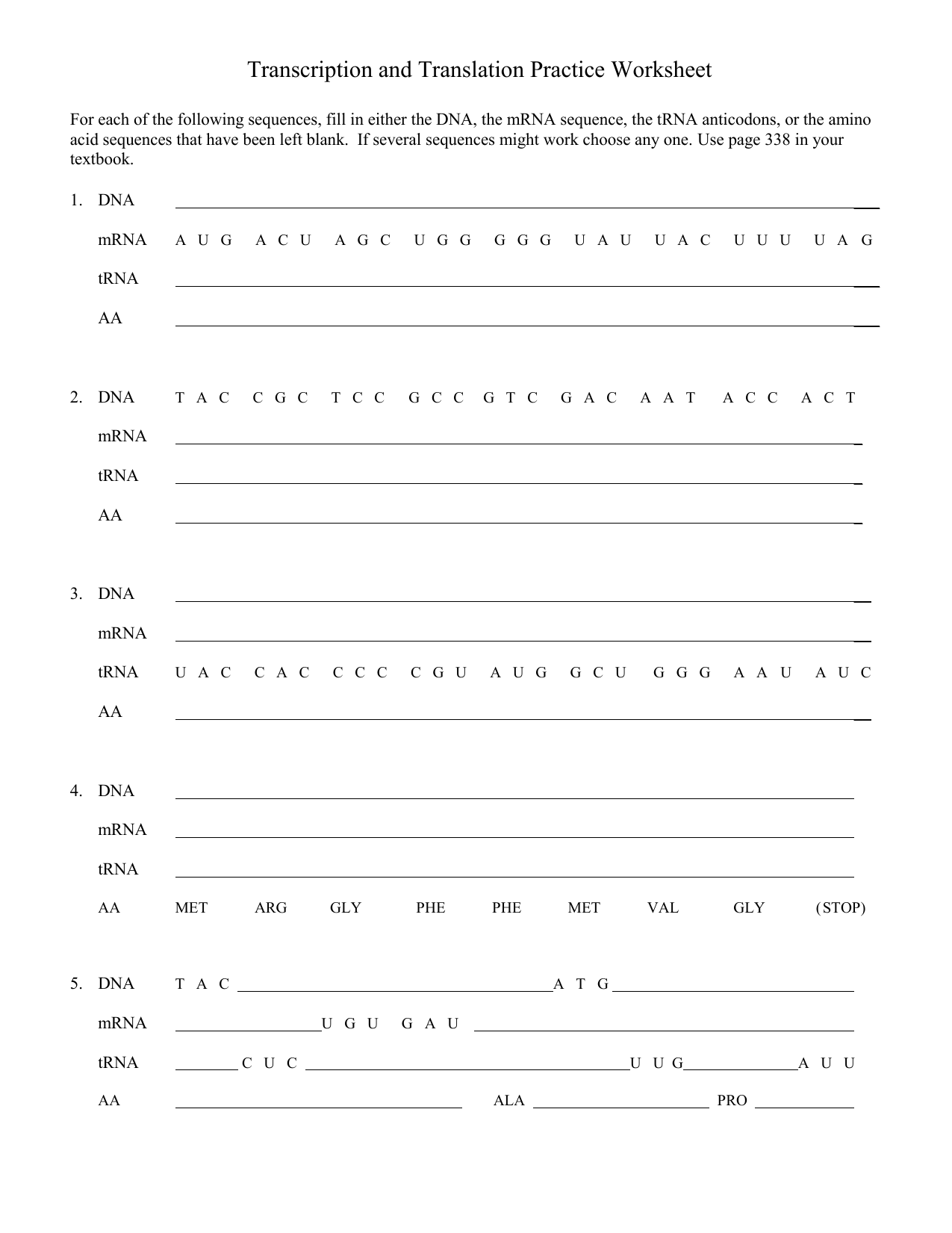 Transcription And Translation Practice Worksheet 1 1