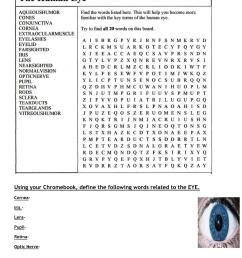 part of the eye diagram label [ 1275 x 1651 Pixel ]