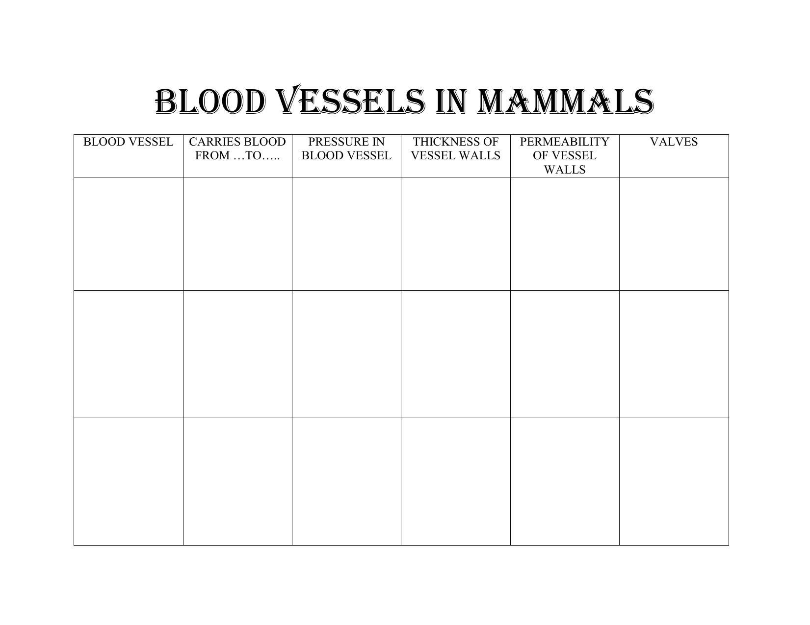 Blood Vessels In Mammals Worksheet