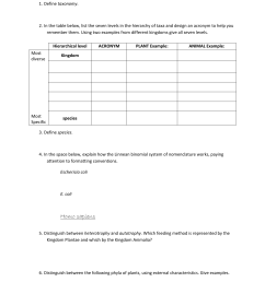 Kingdom Plantae Worksheets   Printable Worksheets and Activities for  Teachers [ 1651 x 1275 Pixel ]