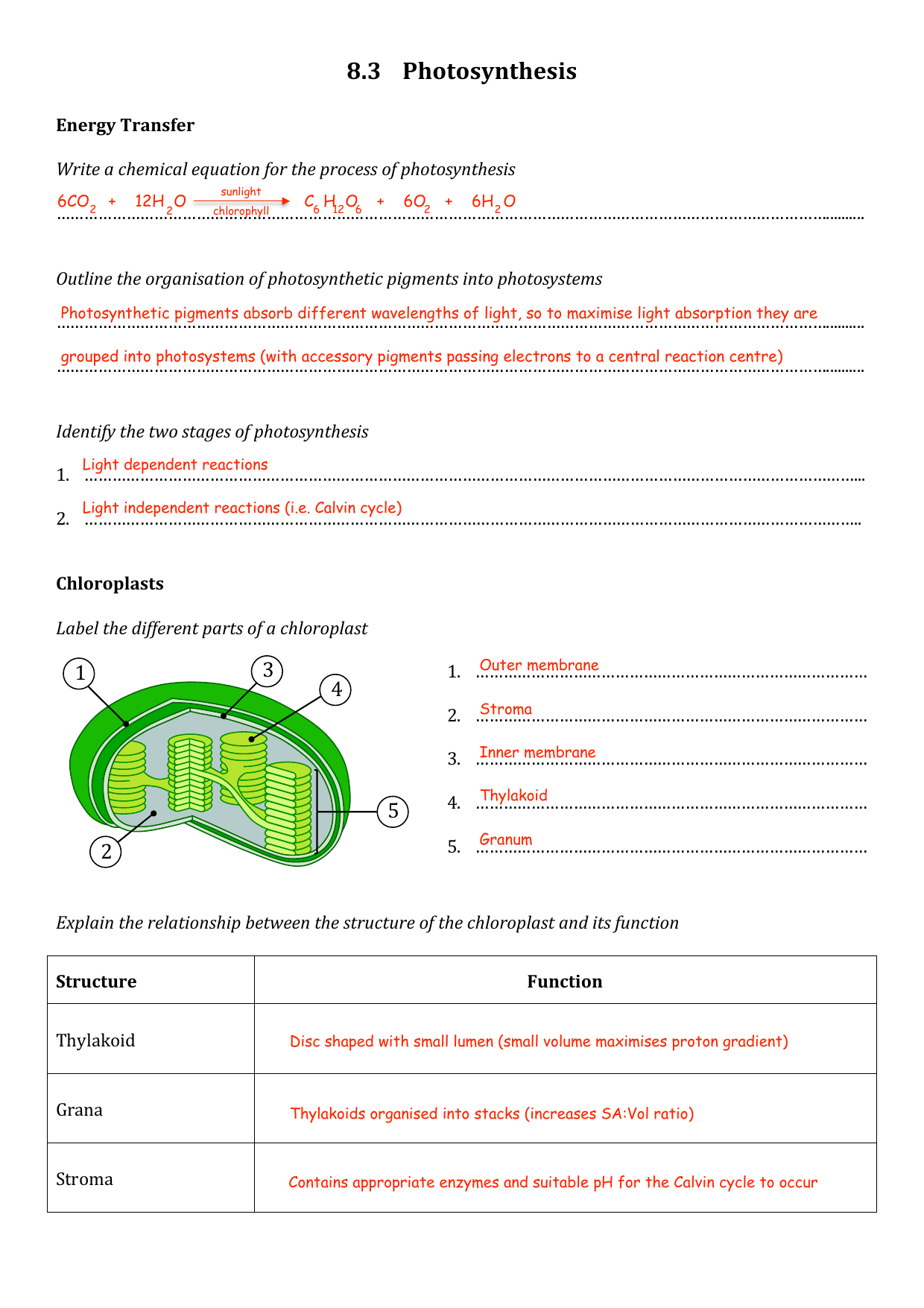 Topic 8 3 Worksheet Answers