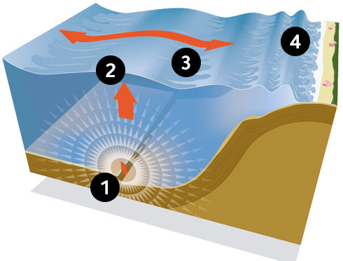 tsunami diagram with labels smoke detector video