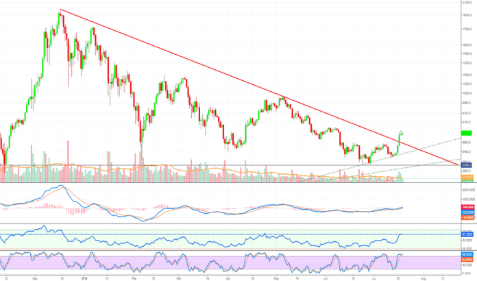 BTCUSD: Bitcoin To The Moon Pt.6 (The End?!) - Altcoins Market Update