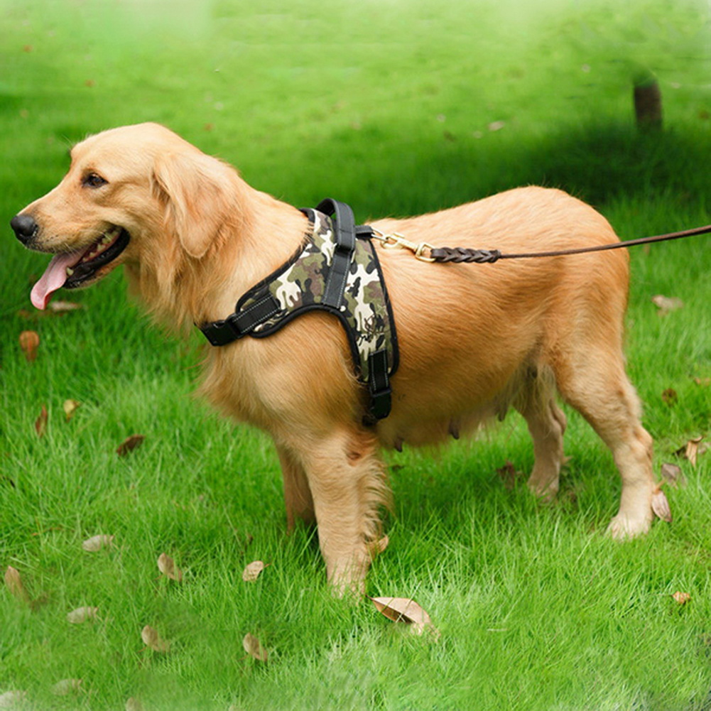 Hot Heavy Duty Dog Harness Padded Extra Big Large Medium Small Dog Harness I  eBay