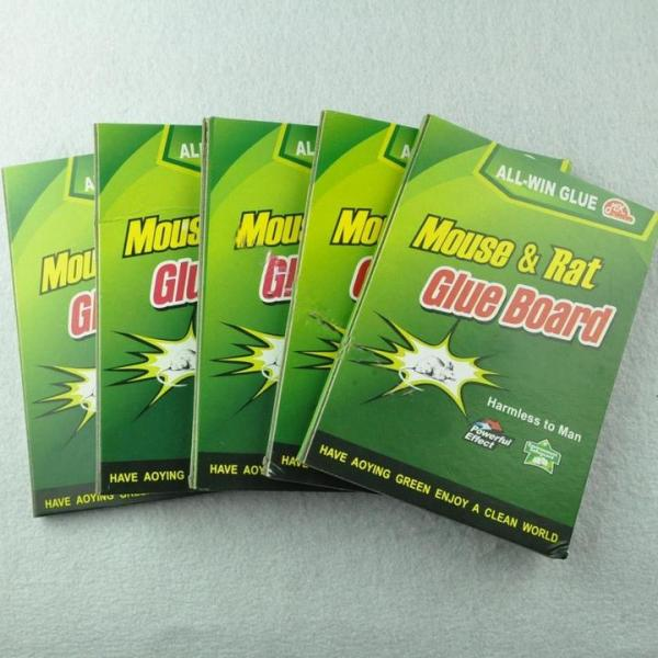 5X MAX strong Sticky Glue Mouse Rat Snake Bugs Mice Trap