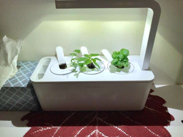 smart home herb garden plant