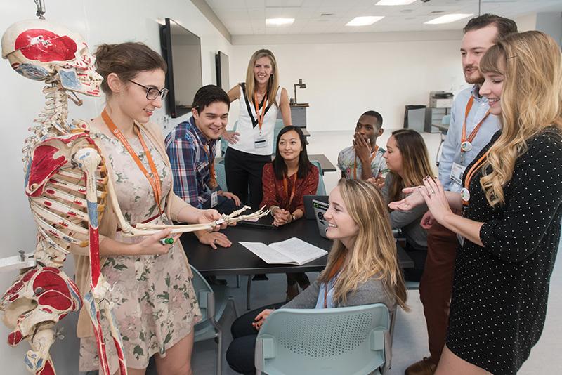 Estudiantes de medicina estudian un modelo de esqueleto como grupo