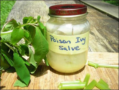 relief for poison ivy, oak, sumac, poison ivy salve