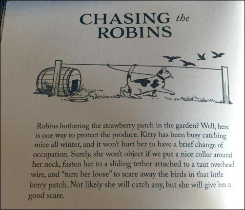 cat chasing birds, How to Do Things book, homesteading in the past