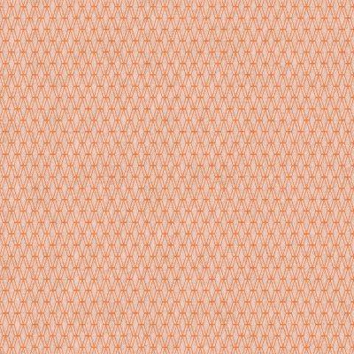 Mishmesh – Sherbet Canvas Fabric