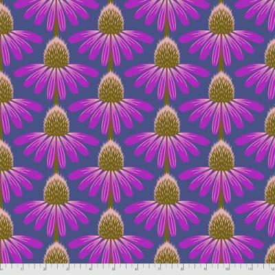 Echinacea Haute