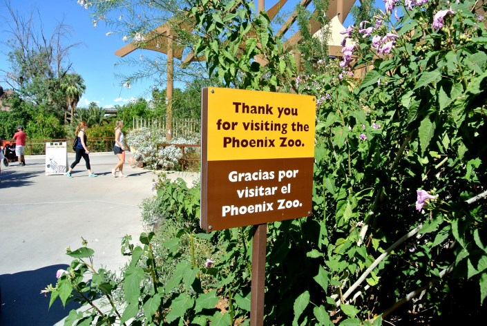 zoo, phoenix, AZ, activity, things to do, outdoor, exhibit, animals, family, special, LEGO, Fall, Autumn, venture, adventure, baby, parents, wild life, train, 4d, theater, gift, shop, lake