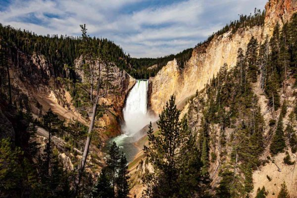 Yellowstone National Park Screensaver and Desktop Images Grand Canyon of Yellowstone