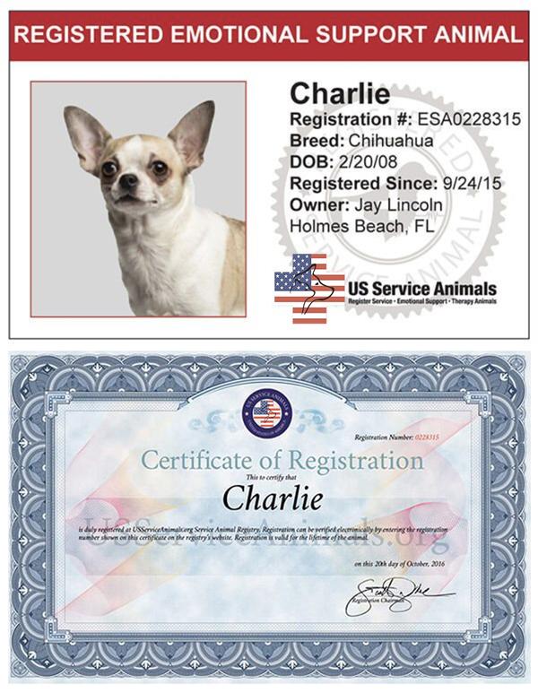 Register Your Emotional Support Animal Online | US Service ...