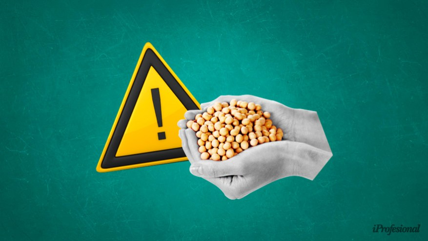 The price of soybeans plummeted Thursday in Chicago.  July / 21 position fell u $ s43.63